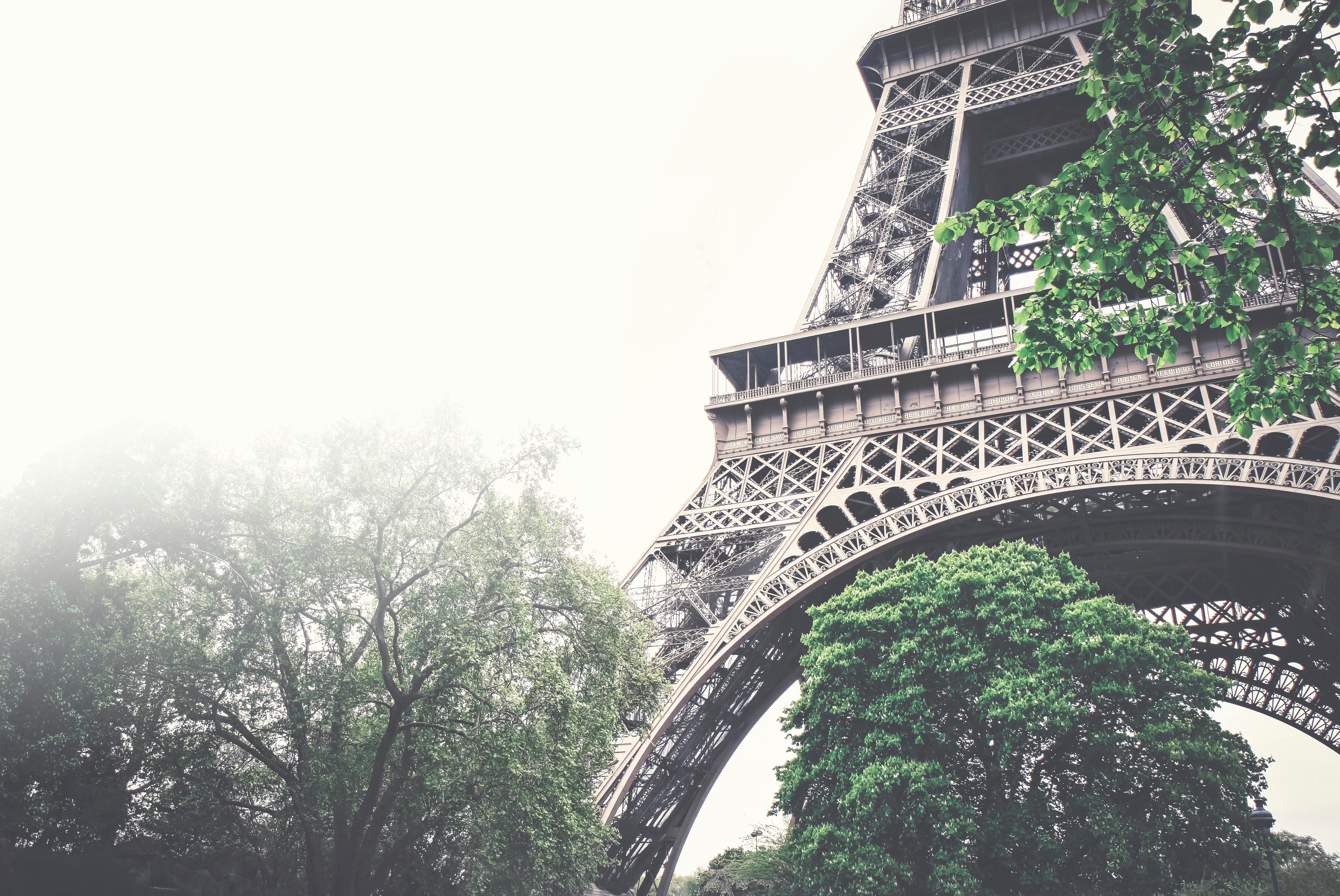 Fransızca Öğrenmek için Başvurulacak En iyi Kurs Yöntemi Hangisidir?